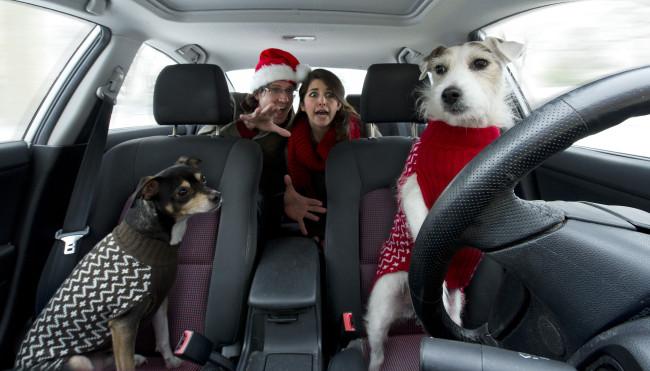 Christmas Couple Selfie dogs