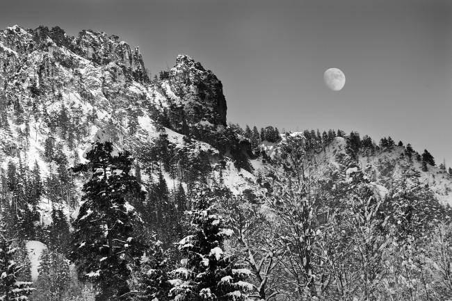 Landscape Trees Mountain Moon