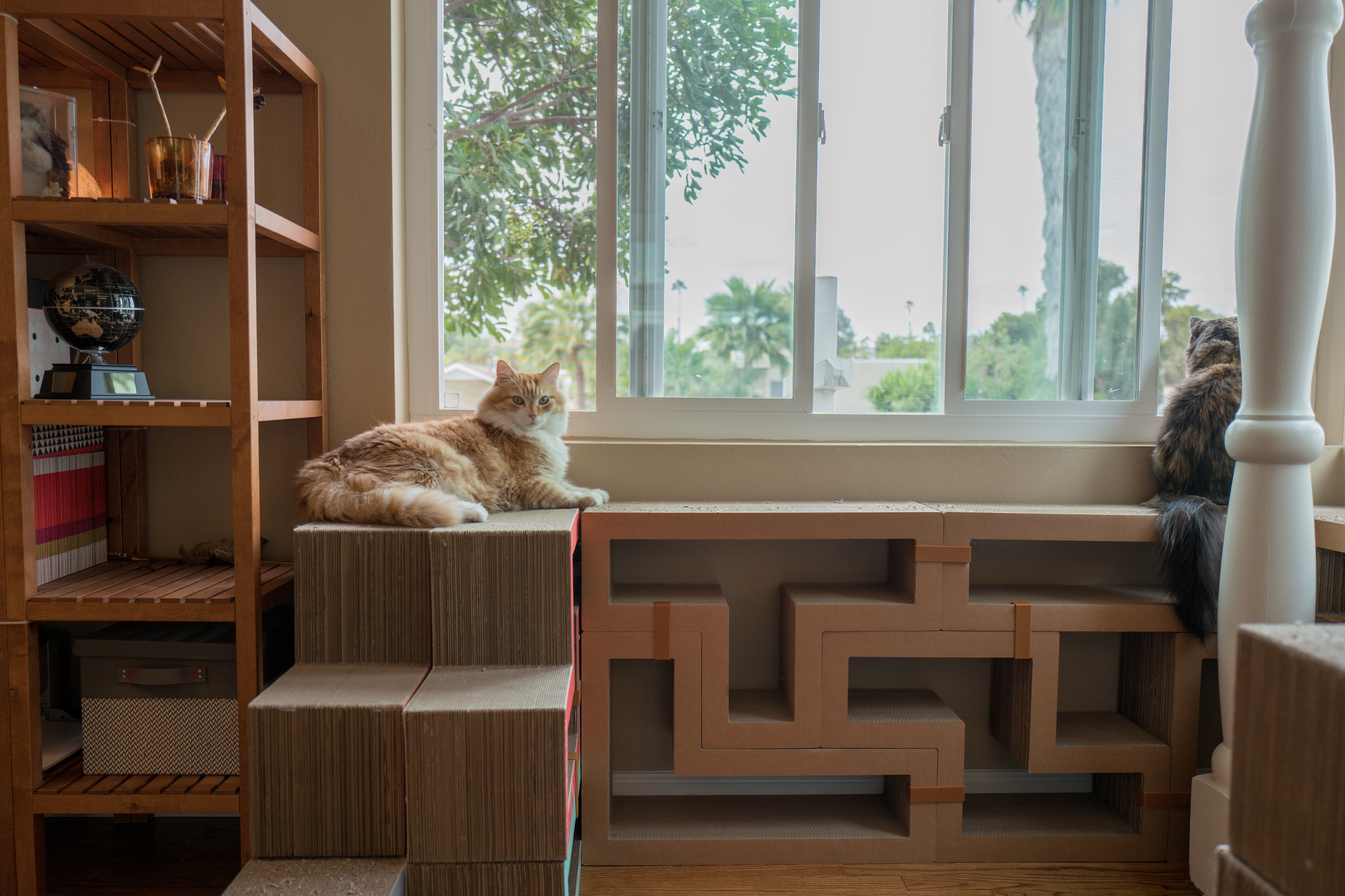 Among the sequence shot, only one offers best breadth-sense of the corner  windows. I debated the choice, since Cali's head is just outside the narrow  field ...